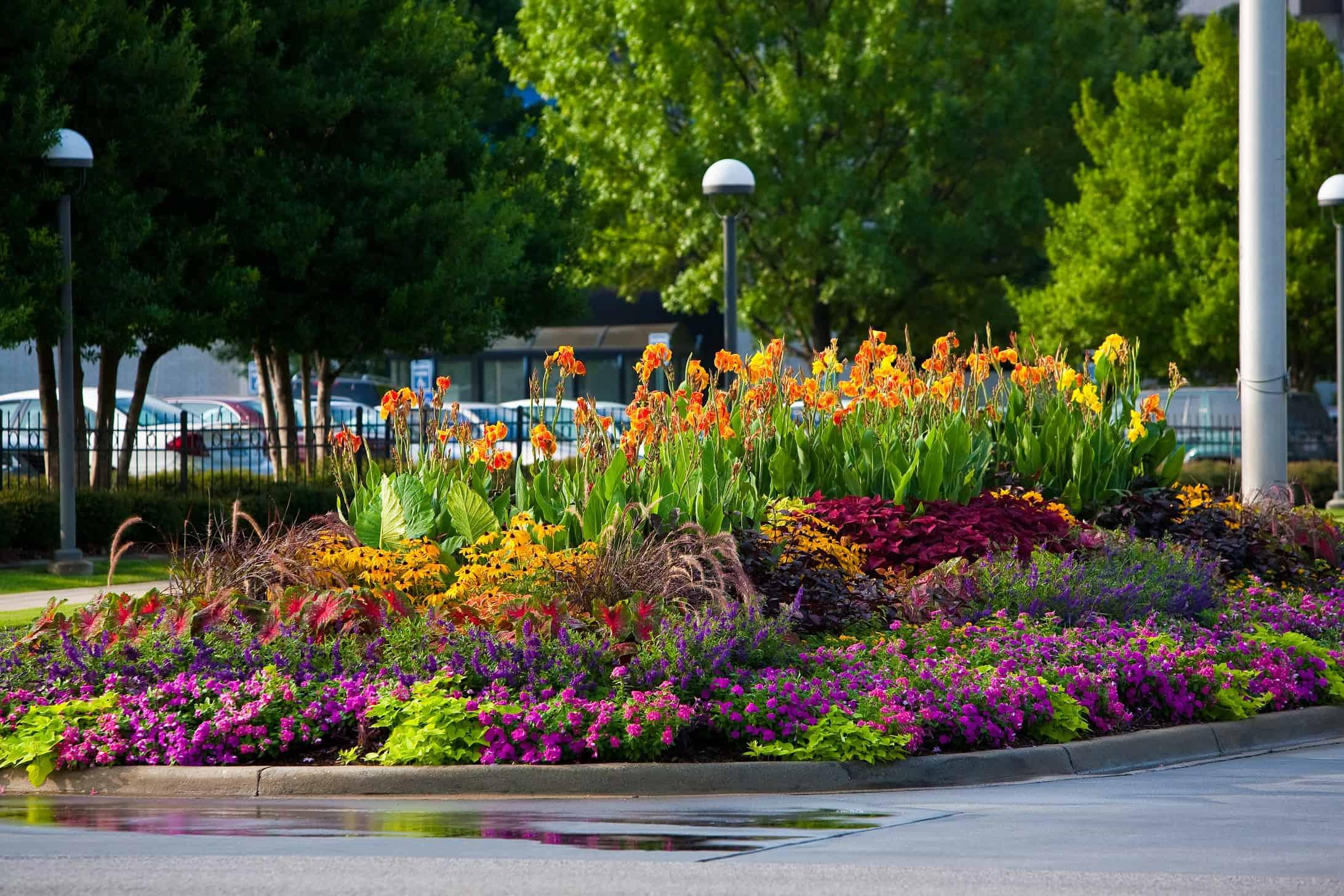 Year round plants for flower beds - Ideas On Pinterest Flower Garden Blackjack With Full Sun Perennial Garden Plans